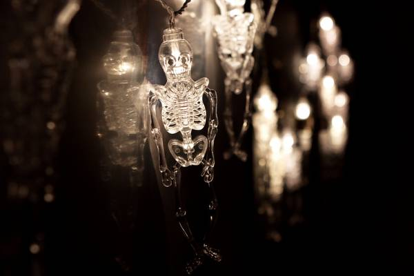 Bilde av Lyslenke skjelett - 3 meter 20 pærer. Halloween